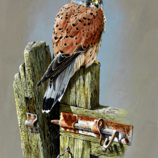 The Gatekeeper (Kestrel) by Terance James Bond