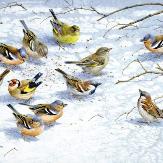 Winter Finches by Terance James Bond