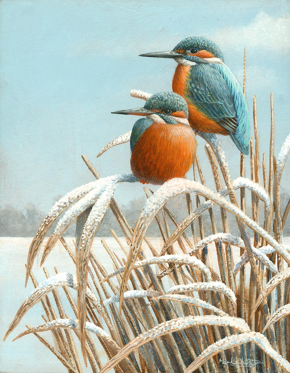 Winter Reeds by Mark Chester