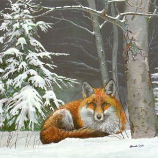Winter Fox by Kenneth Smith