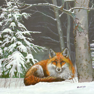 Winter Fox by Kenneth Smith