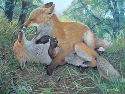 Fox Cub Frolics by Kenneth Smith