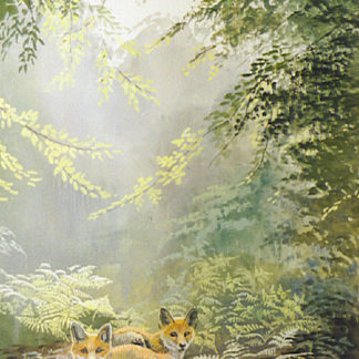 Forest Friends by Kenneth Smith