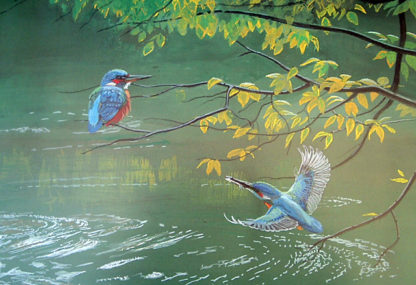 Kingfishers by Kenneth Smith