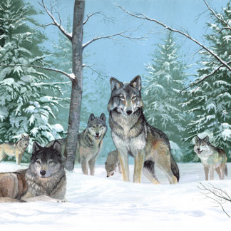 The Pack by Kenneth Smith