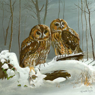 Tawny Twosome by Kenneth Smith