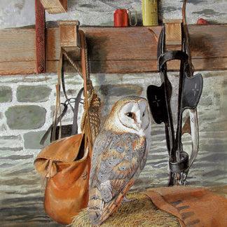 The Owl Barn by Kenneth Smith