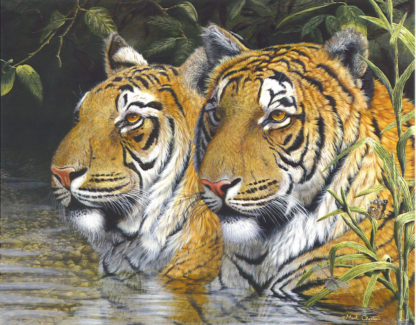 Tiger 5 by Mark Chester