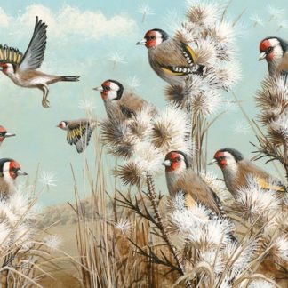 ThistleDown (Goldfinches) by Mark Chester