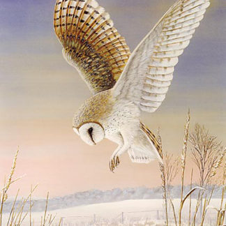 Evening Flight by Mark Chester